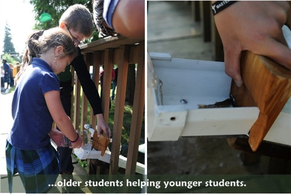 Hylebos Creek: older students help younger students release a salmon
